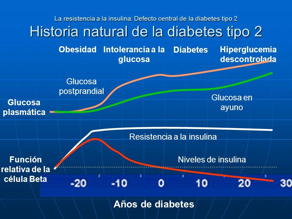 Años de diabetes Obesidad Intolerancia a la glucosa Diabetes