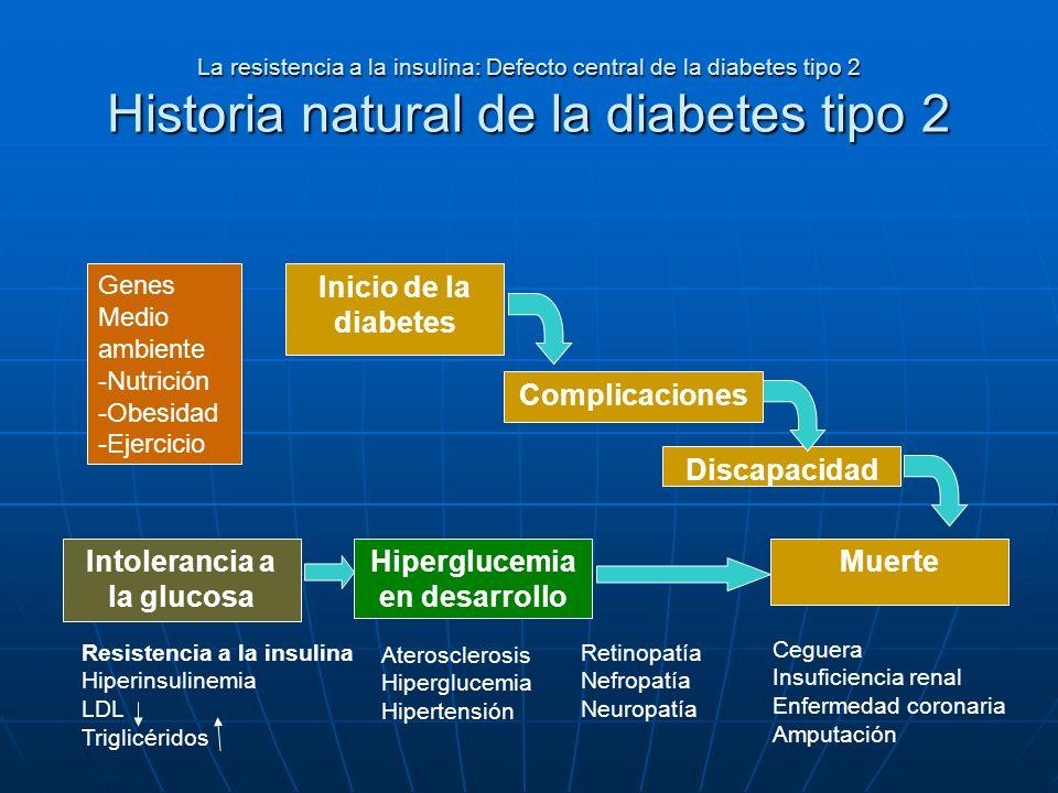 Intolerancia a la glucosa Hiperglucemia en desarrollo