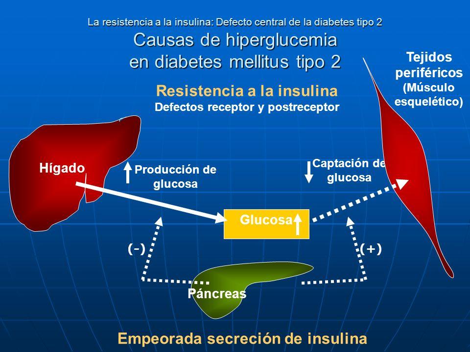 Resistencia a la insulina Empeorada secreción de insulina