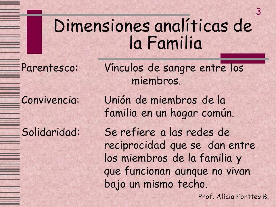 Dimensiones analíticas de la Familia
