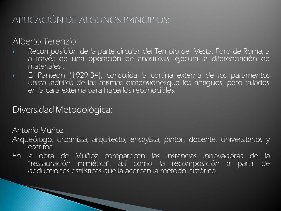 APLICACIÓN DE ALGUNOS PRINCIPIOS: Alberto Terenzio: