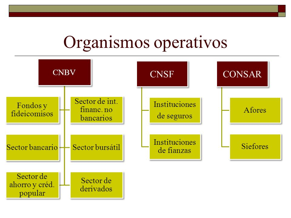 Organismos operativos