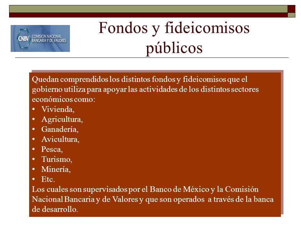 Fondos y fideicomisos públicos