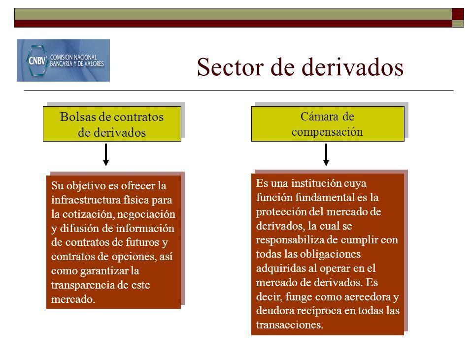 Sector de derivados Bolsas de contratos de derivados Cámara de