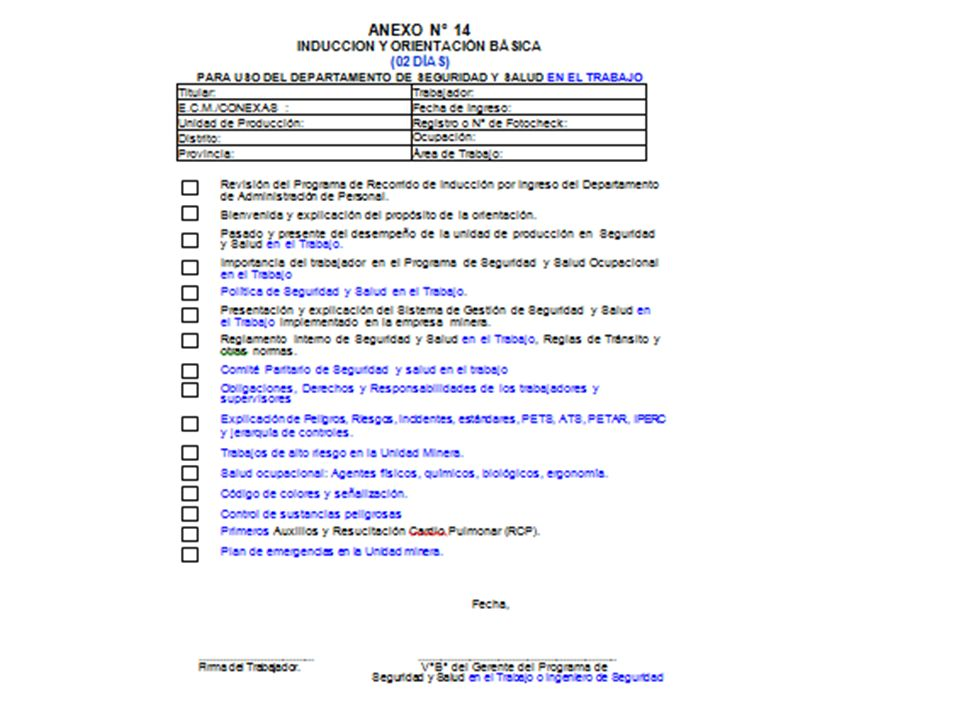 ANEXO N° 12 – B: CUADRO ESTADISTICO DE ACCIDENTES INCAPACITANTES