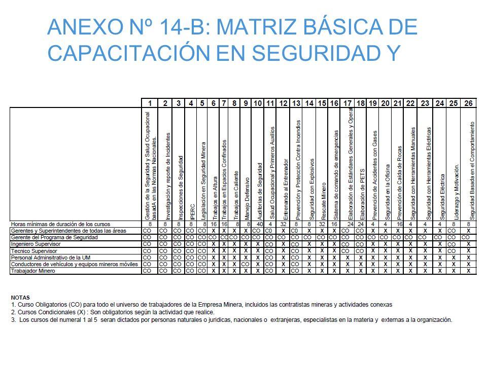 ANEXO N° 13 CUADRO ESTADISTICO DE SEGURIDAD