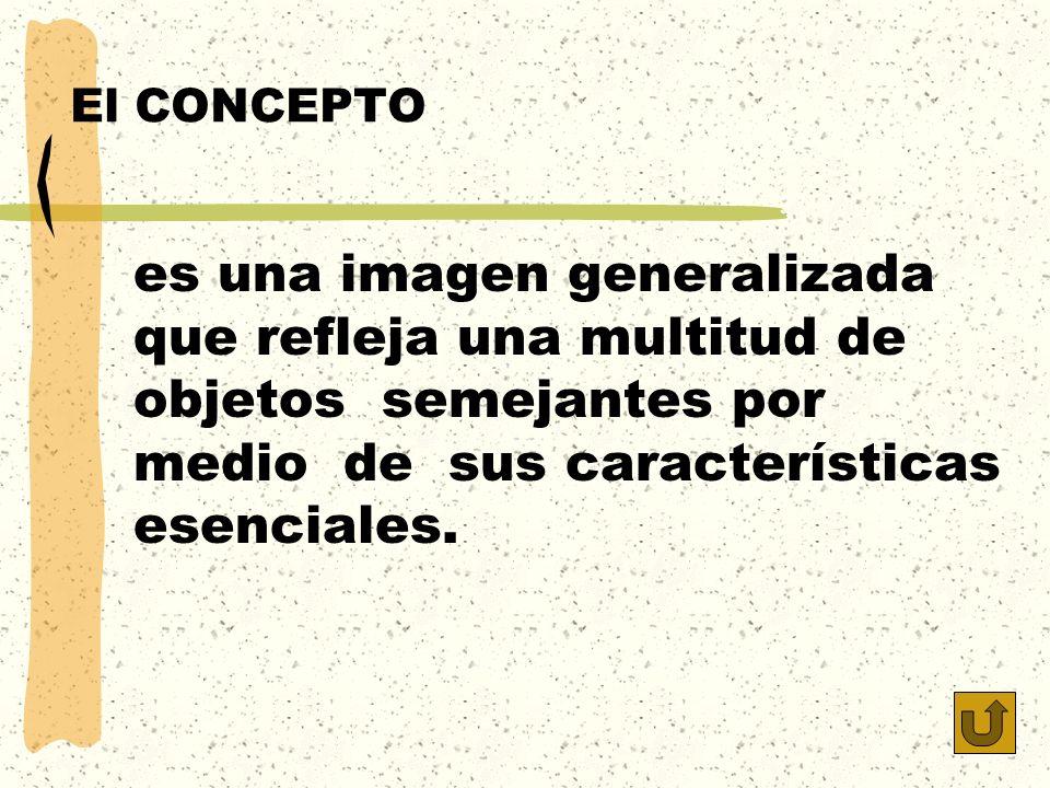 El CONCEPTO es una imagen generalizada que refleja una multitud de objetos semejantes por medio de sus características esenciales.