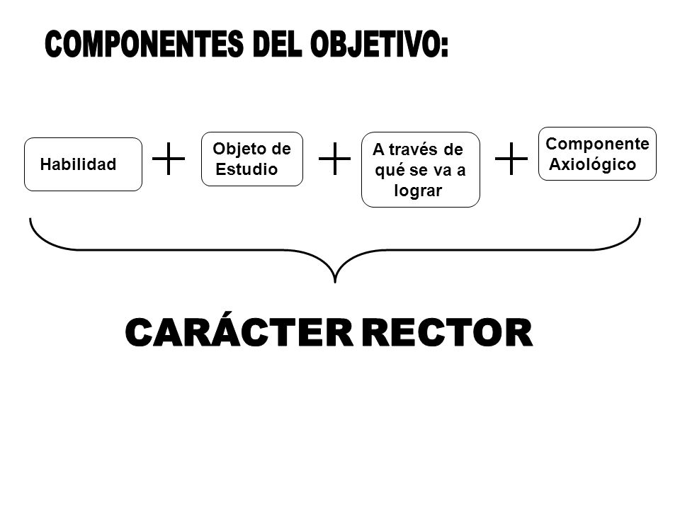 COMPONENTES DEL OBJETIVO: