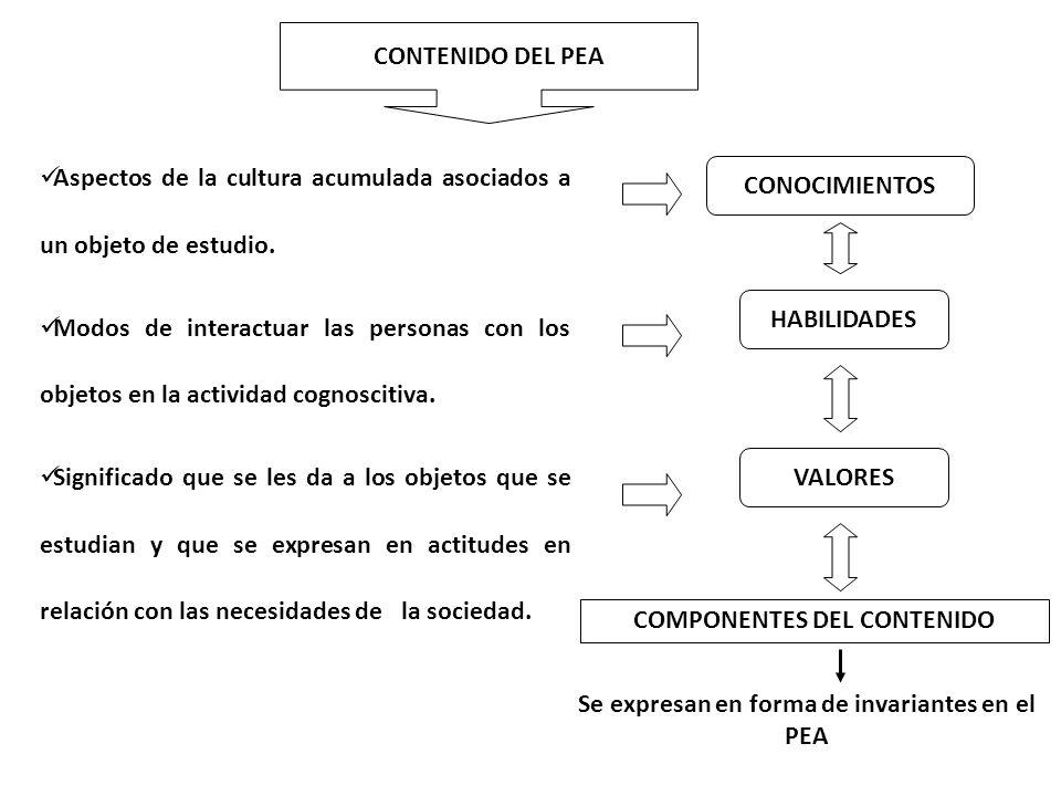 Aspectos de la cultura acumulada asociados a un objeto de estudio.