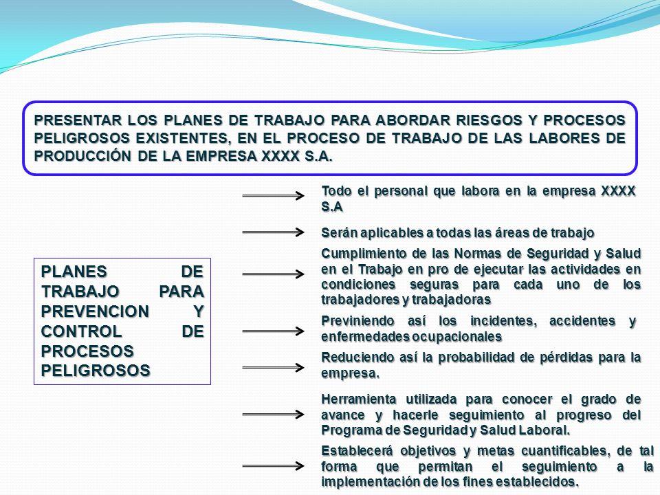 PLANES DE TRABAJO PARA PREVENCION Y CONTROL DE PROCESOS PELIGROSOS