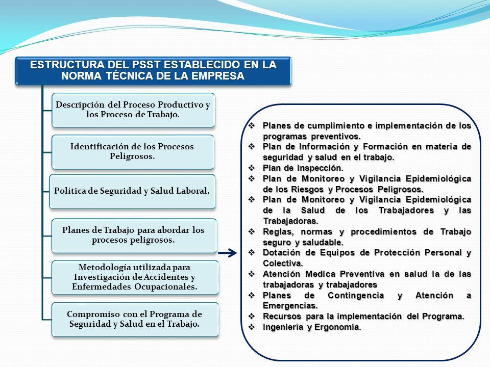 ESTRUCTURA DEL PSST ESTABLECIDO EN LA NORMA TÉCNICA DE LA EMPRESA