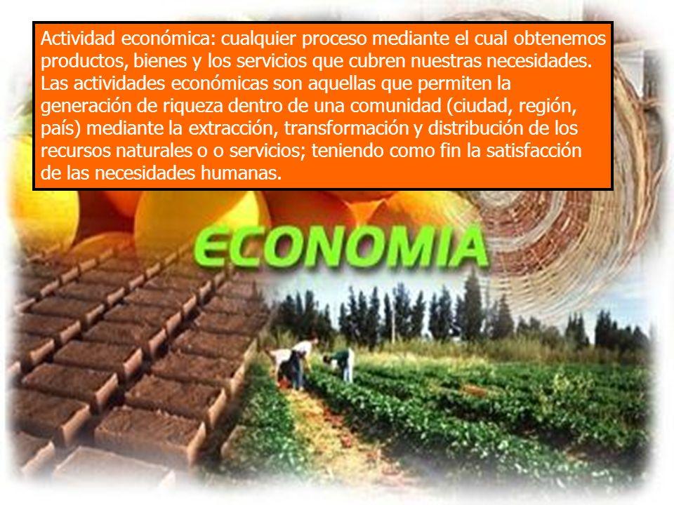 Actividad económica: cualquier proceso mediante el cual obtenemos productos, bienes y los servicios que cubren nuestras necesidades.