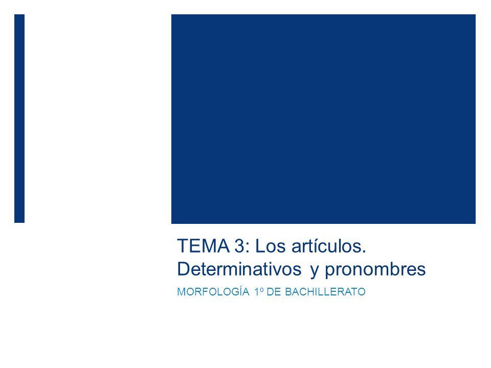 TEMA 3: Los artículos. Determinativos y pronombres