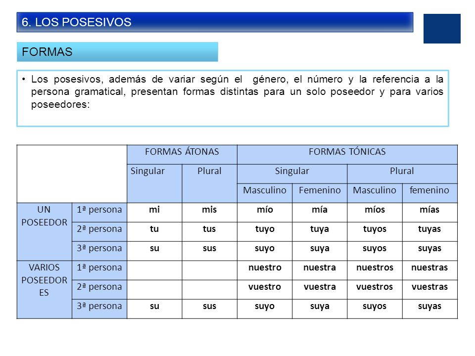 6. LOS POSESIVOS FORMAS.