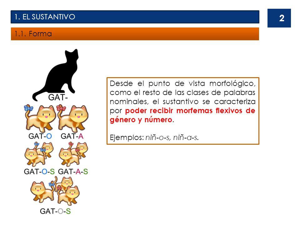 1. EL SUSTANTIVO 1.1. Forma.