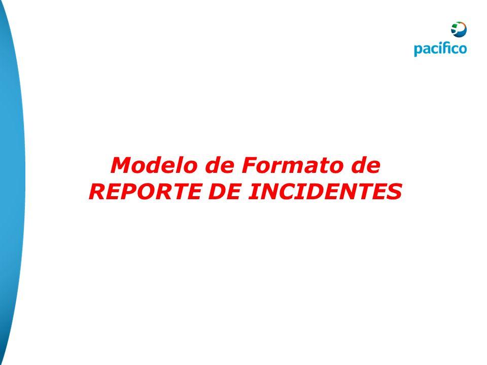 Modelo de Formato de REPORTE DE INCIDENTES