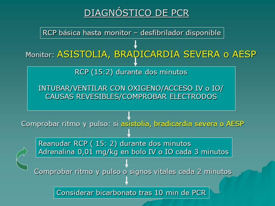 RCP (15:2) durante dos minutos