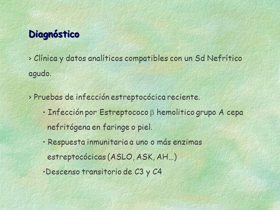 Diagnóstico Clínica y datos analíticos compatibles con un Sd Nefrítico agudo. Pruebas de infección estreptocócica reciente.