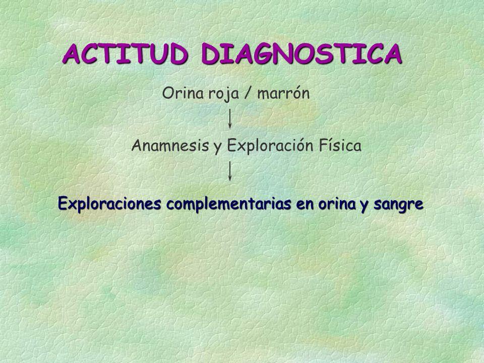 ACTITUD DIAGNOSTICA Orina roja / marrón Anamnesis y Exploración Física