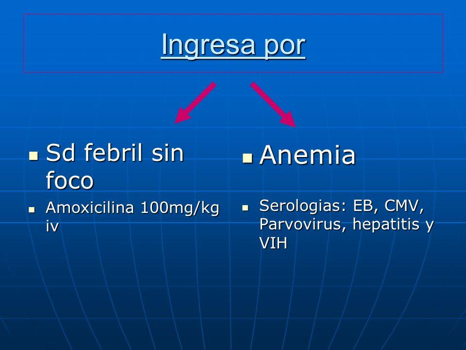 Ingresa por Anemia Sd febril sin foco Amoxicilina 100mg/kg iv