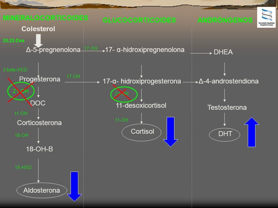 17- α-hidroxipregnenolona DHEA