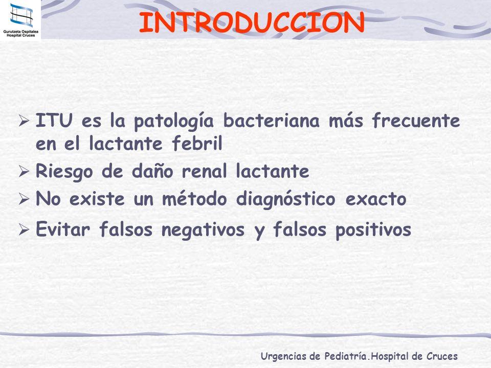 INTRODUCCION ITU es la patología bacteriana más frecuente en el lactante febril. Riesgo de daño renal lactante.