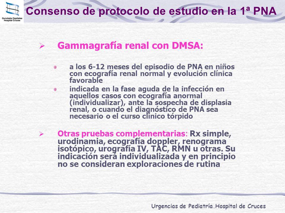 Consenso de protocolo de estudio en la 1ª PNA