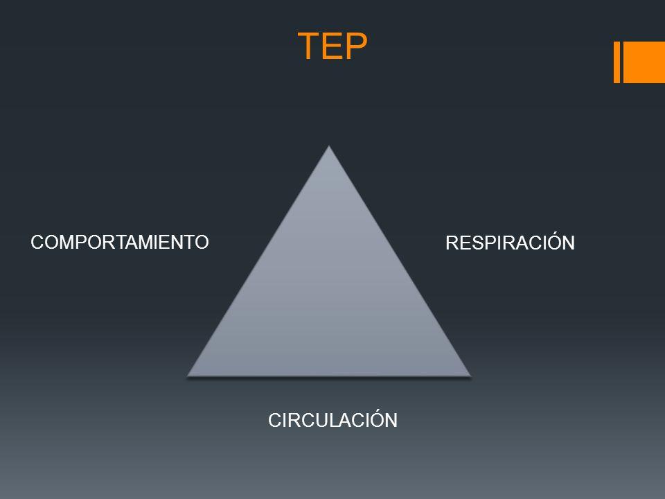 TEP COMPORTAMIENTO RESPIRACIÓN CIRCULACIÓN