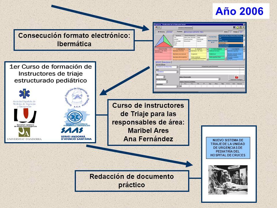 Año 2006 Consecución formato electrónico: Ibermática