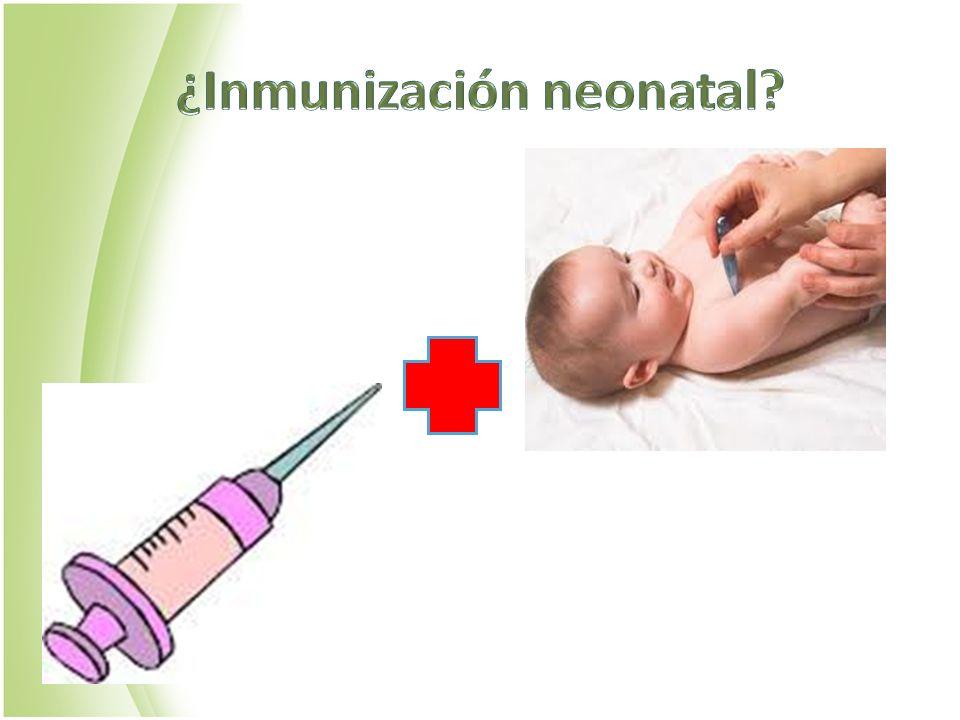 ¿Inmunización neonatal