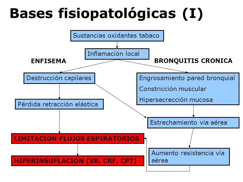 Bases fisiopatológicas (I)