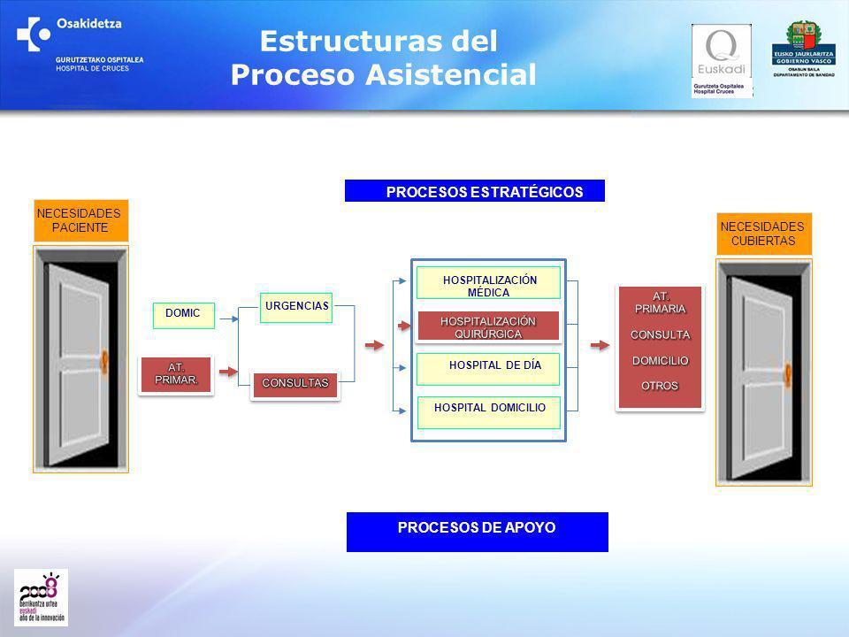 Estructuras del Proceso Asistencial