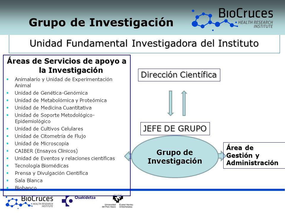 Áreas de Servicios de apoyo a la Investigación Grupo de Investigación