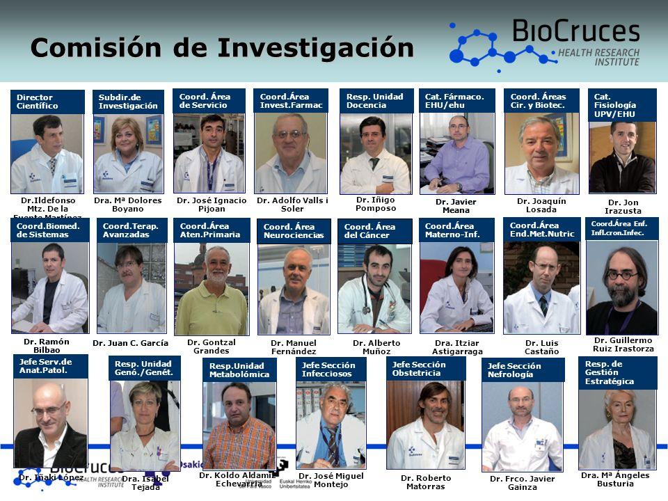 Comisión de Investigación