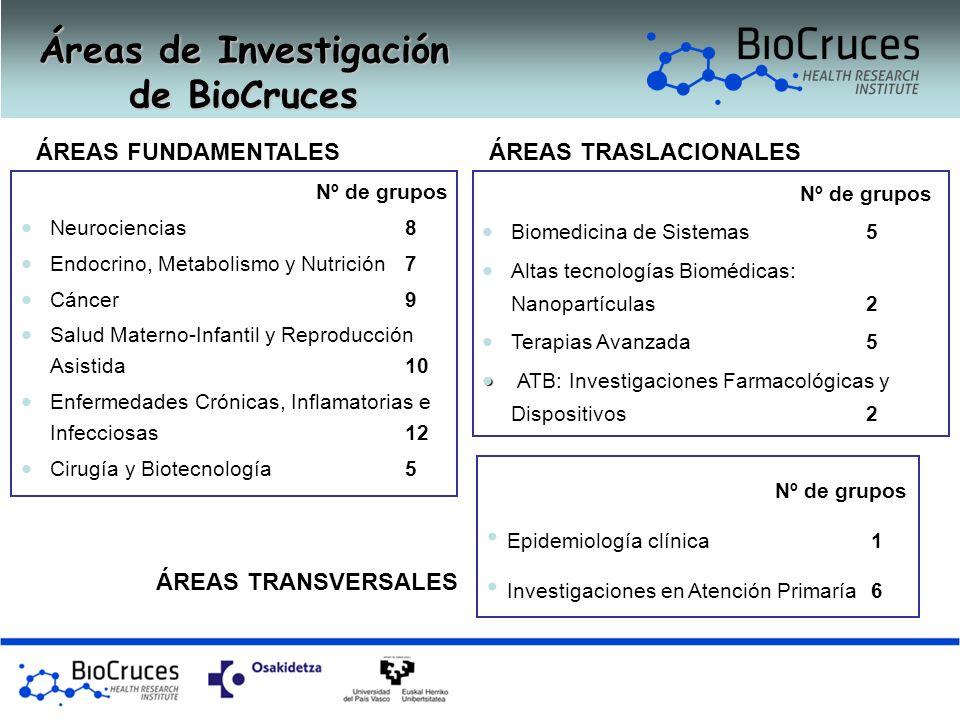 Áreas de Investigación de BioCruces