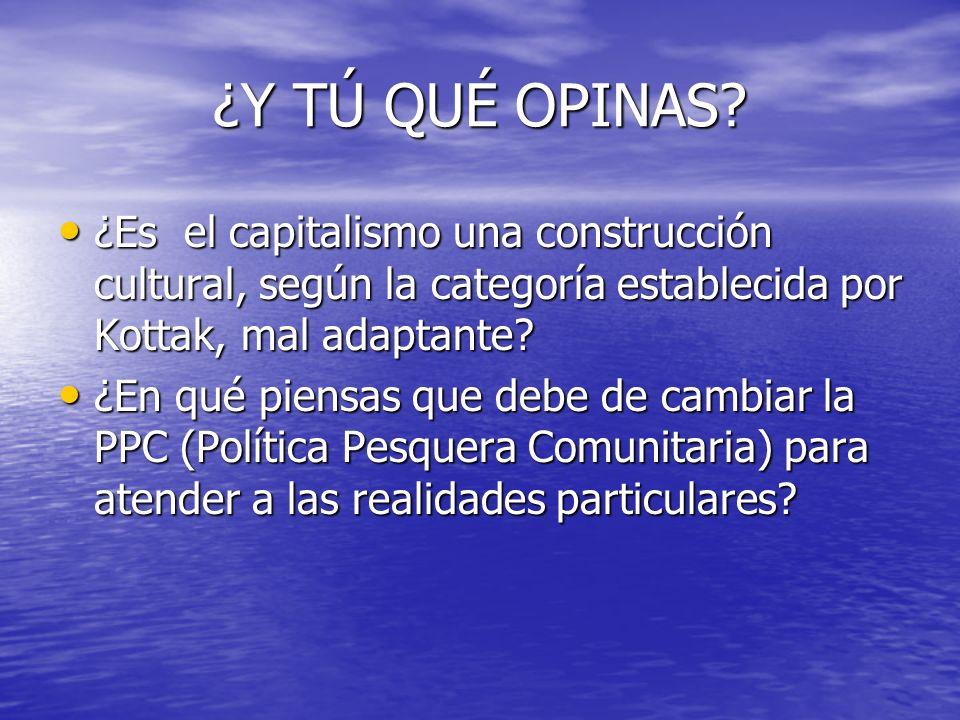 ¿Y TÚ QUÉ OPINAS ¿Es el capitalismo una construcción cultural, según la categoría establecida por Kottak, mal adaptante