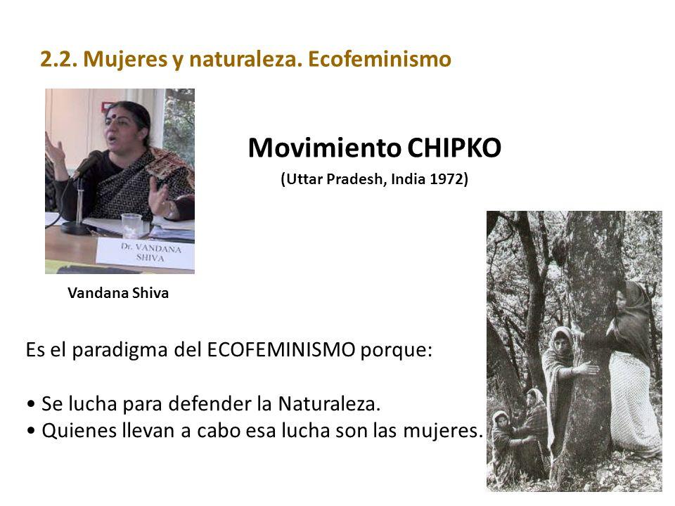 Movimiento CHIPKO 2.2. Mujeres y naturaleza. Ecofeminismo