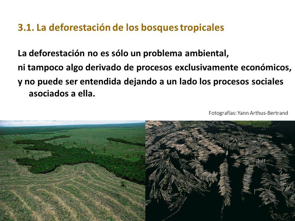 3.1. La deforestación de los bosques tropicales
