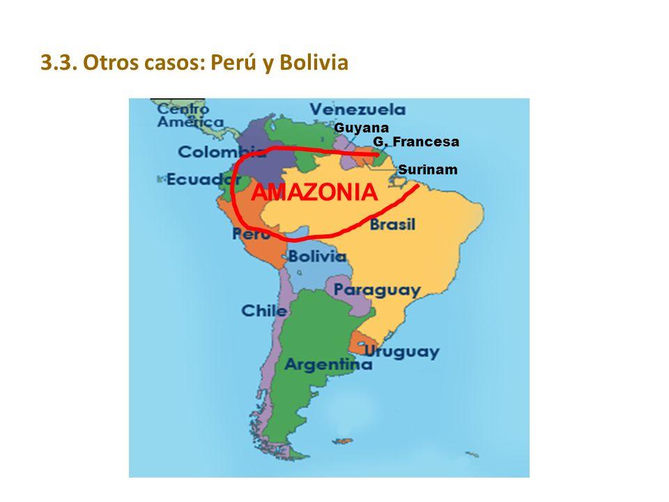 3.3. Otros casos: Perú y Bolivia