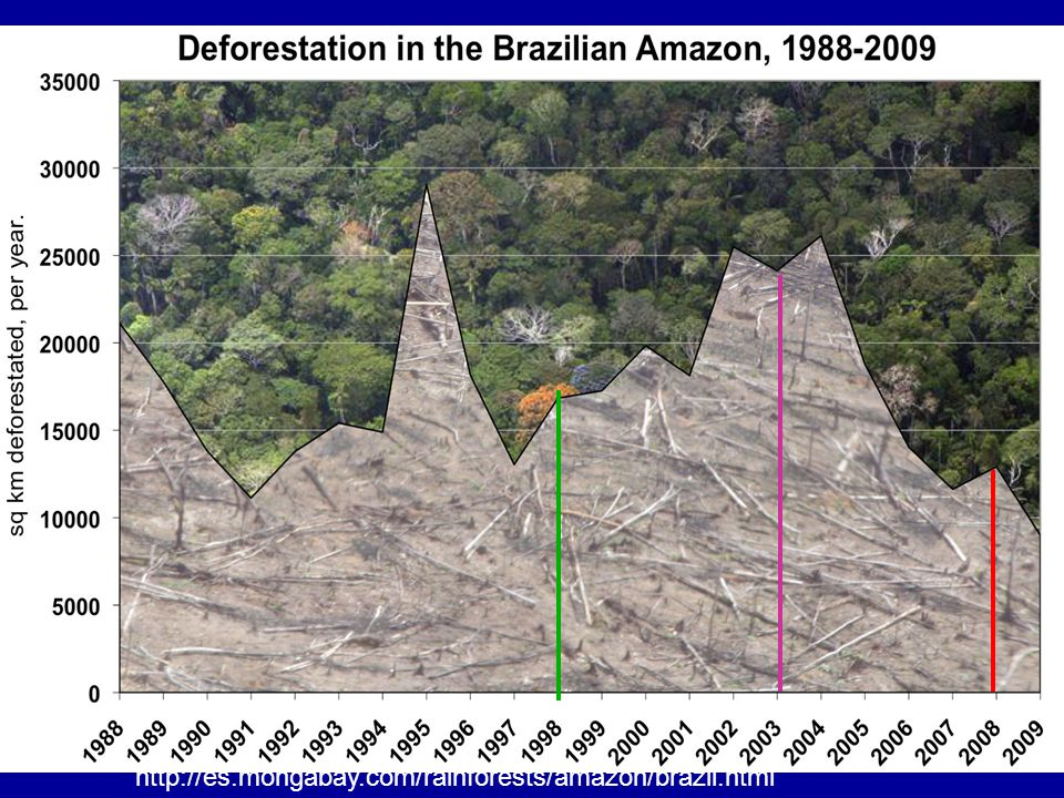Deforestación en la Amazonia Brasileña
