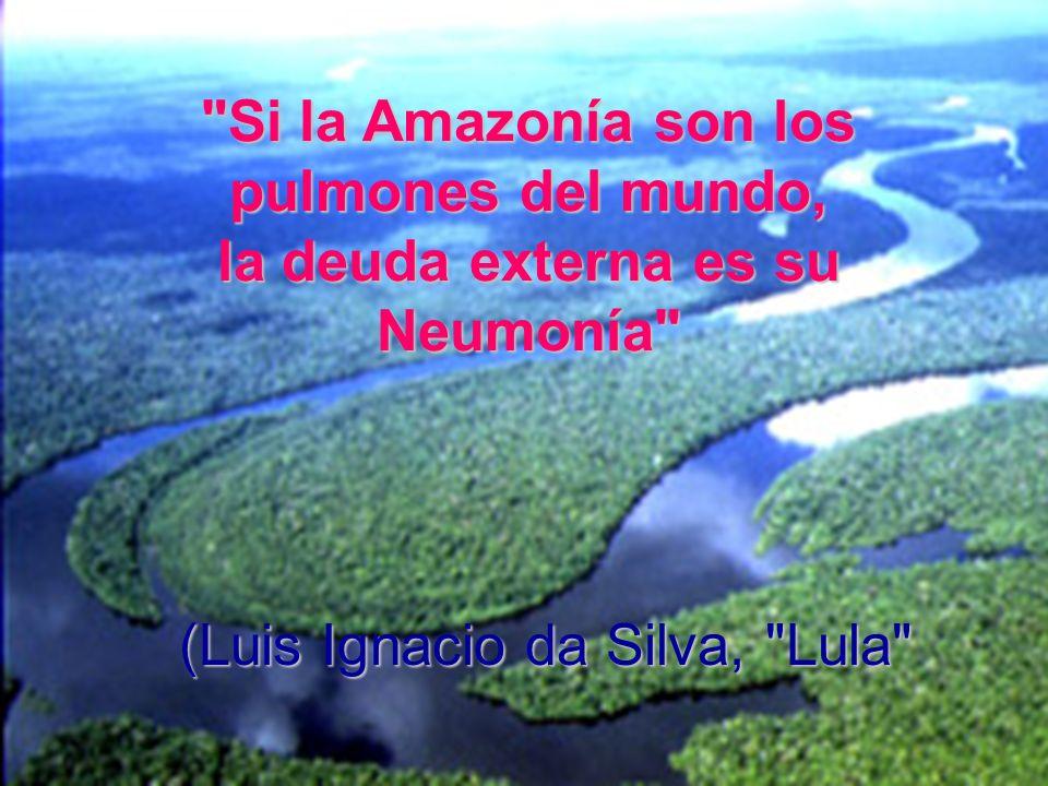 (Luis Ignacio da Silva, Lula