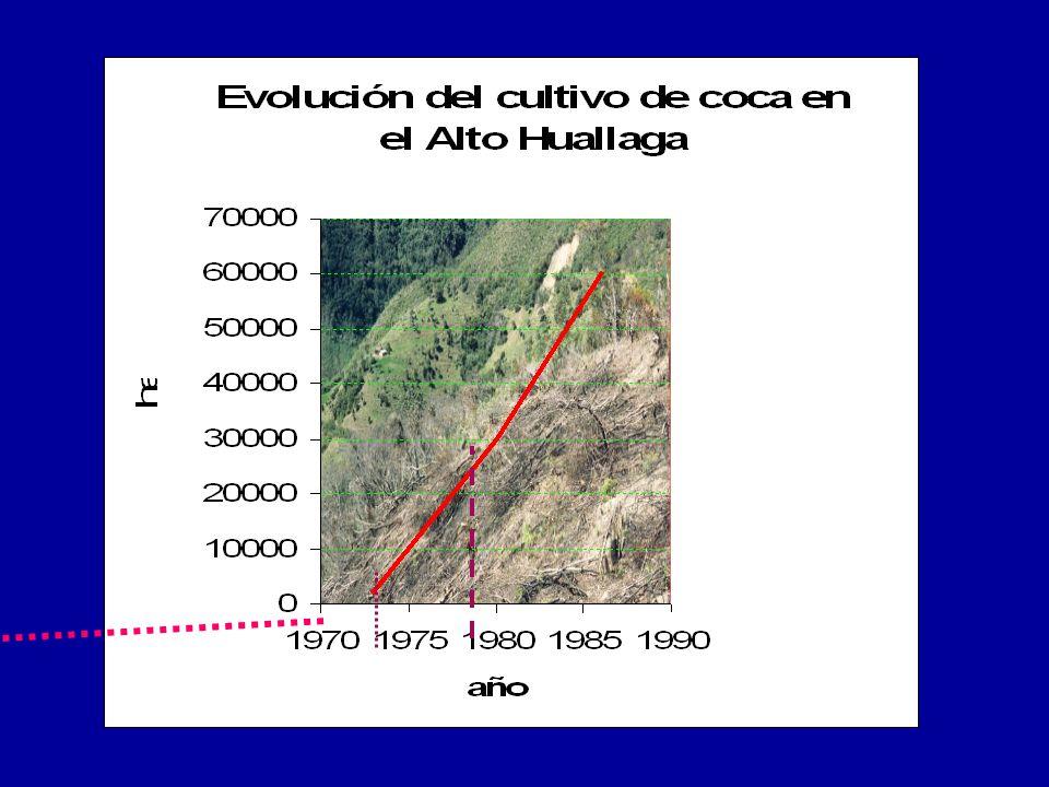 Debido al incremento de la demanda de cocaína a nivel mundial, desde los años cincuenta se viene produciendo una fuerte expansión del cultivo de esta planta