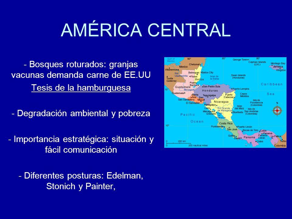 AMÉRICA CENTRALBosques roturados: granjas vacunas demanda carne de EE.UU. Tesis de la hamburguesa. Degradación ambiental y pobreza.