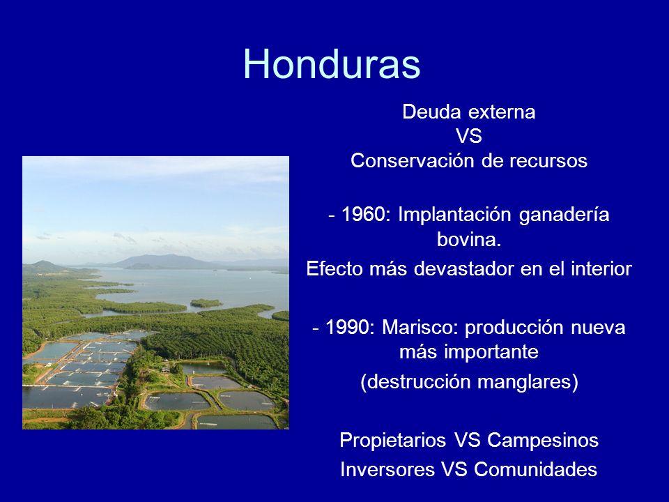Honduras Deuda externa VS Conservación de recursos