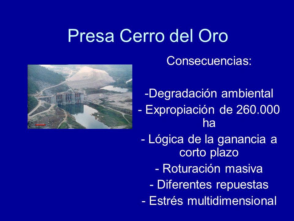 Presa Cerro del Oro Consecuencias: Degradación ambiental