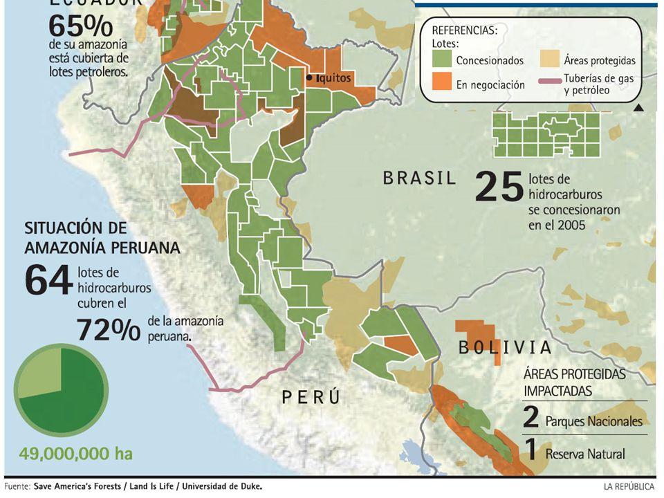 En los años 80, el gobierno peruano se propone erradicar el cultivo de coca en el Alto Huallaga, estimulando las producciones legales, mediante una serie de medidas que incluían la construcción de la Autopista Marginal.