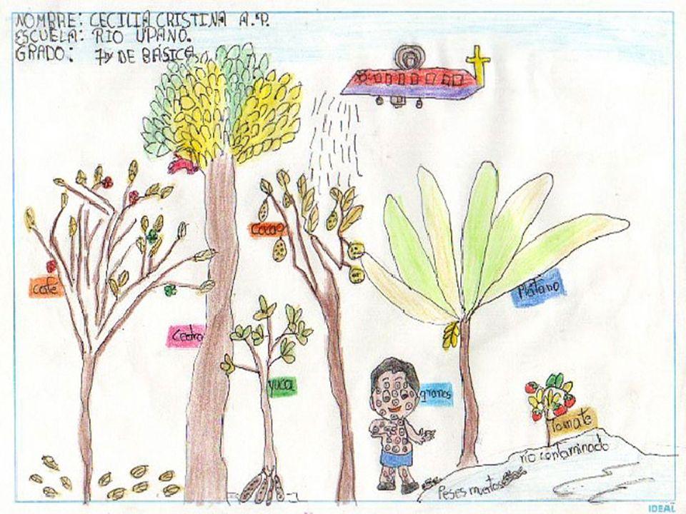 Erradicación de la coca en Colombia