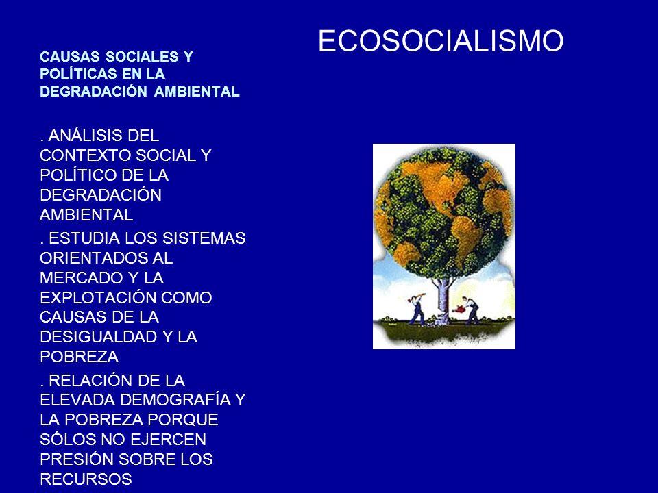 CAUSAS SOCIALES Y POLÍTICAS EN LA DEGRADACIÓN AMBIENTAL
