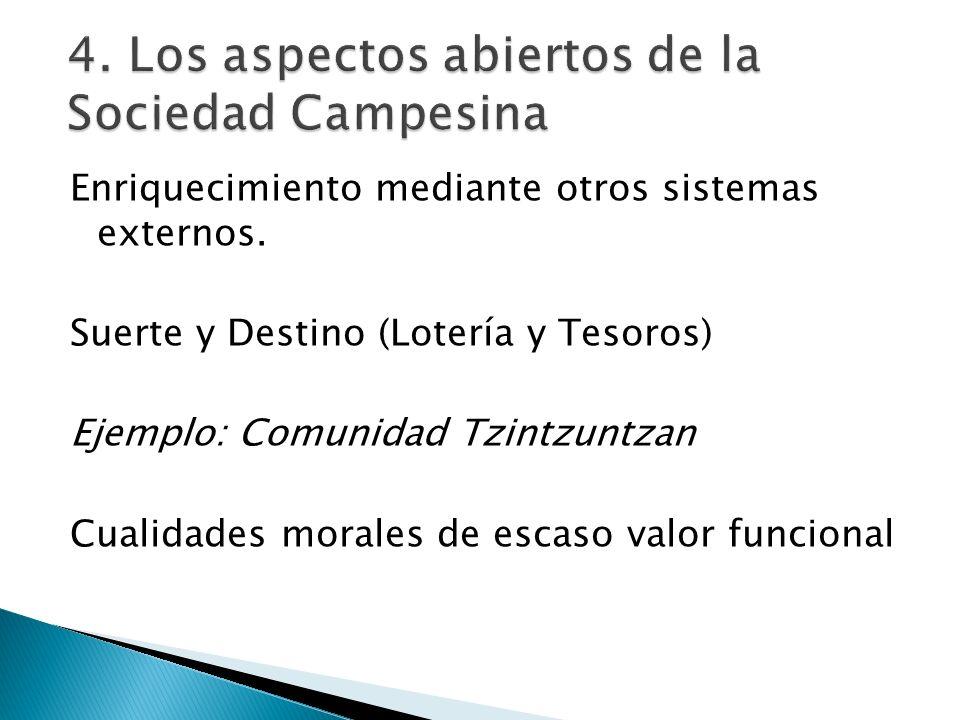 4. Los aspectos abiertos de la Sociedad Campesina