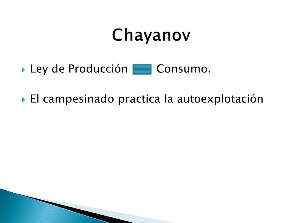 Chayanov Ley de Producción Consumo.